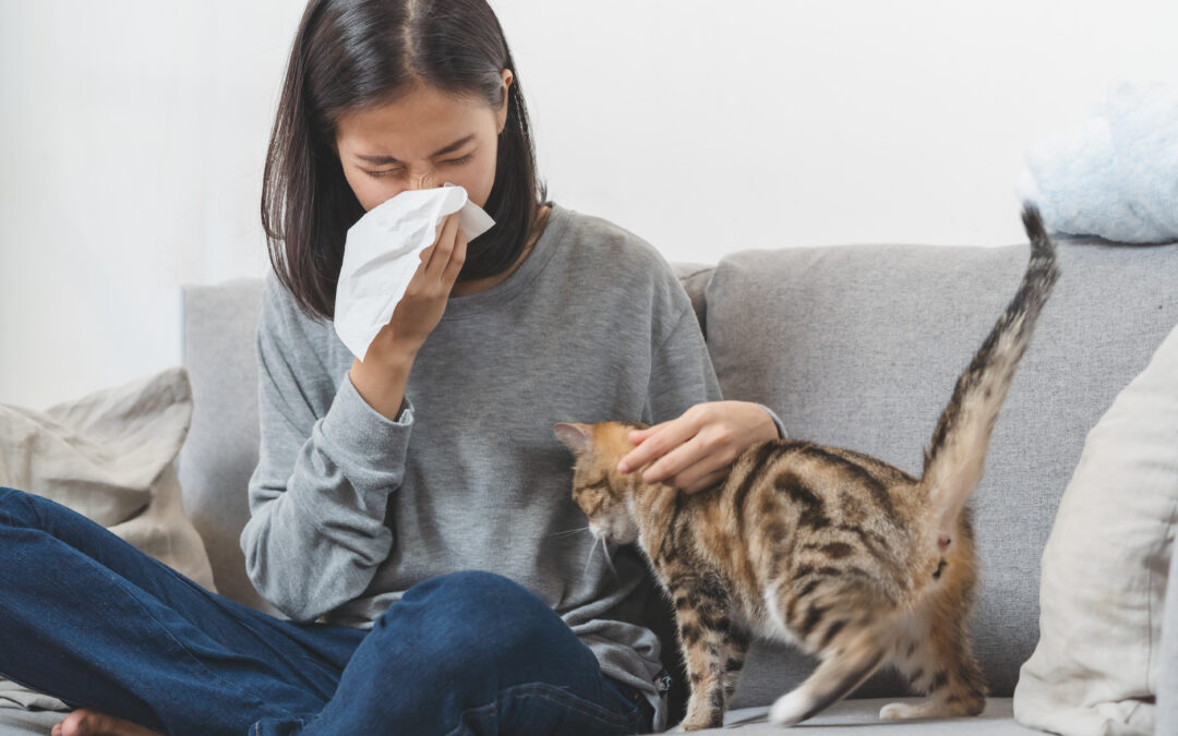 Suffering from Spring Allergies? Air Duct Cleaning Will Help